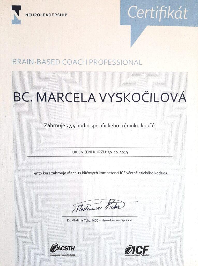 profesionální koučink certifikát